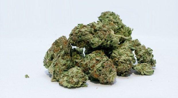 buy weed online canada